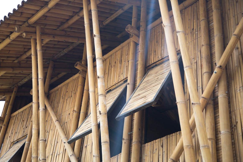 Bamboo Center