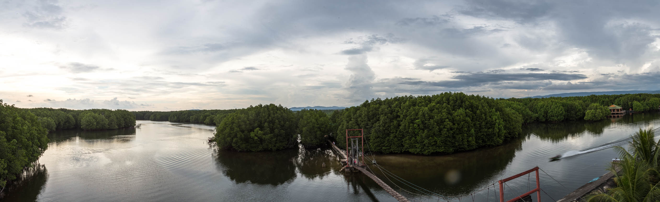 View over the mangrove forests in Koh Kong