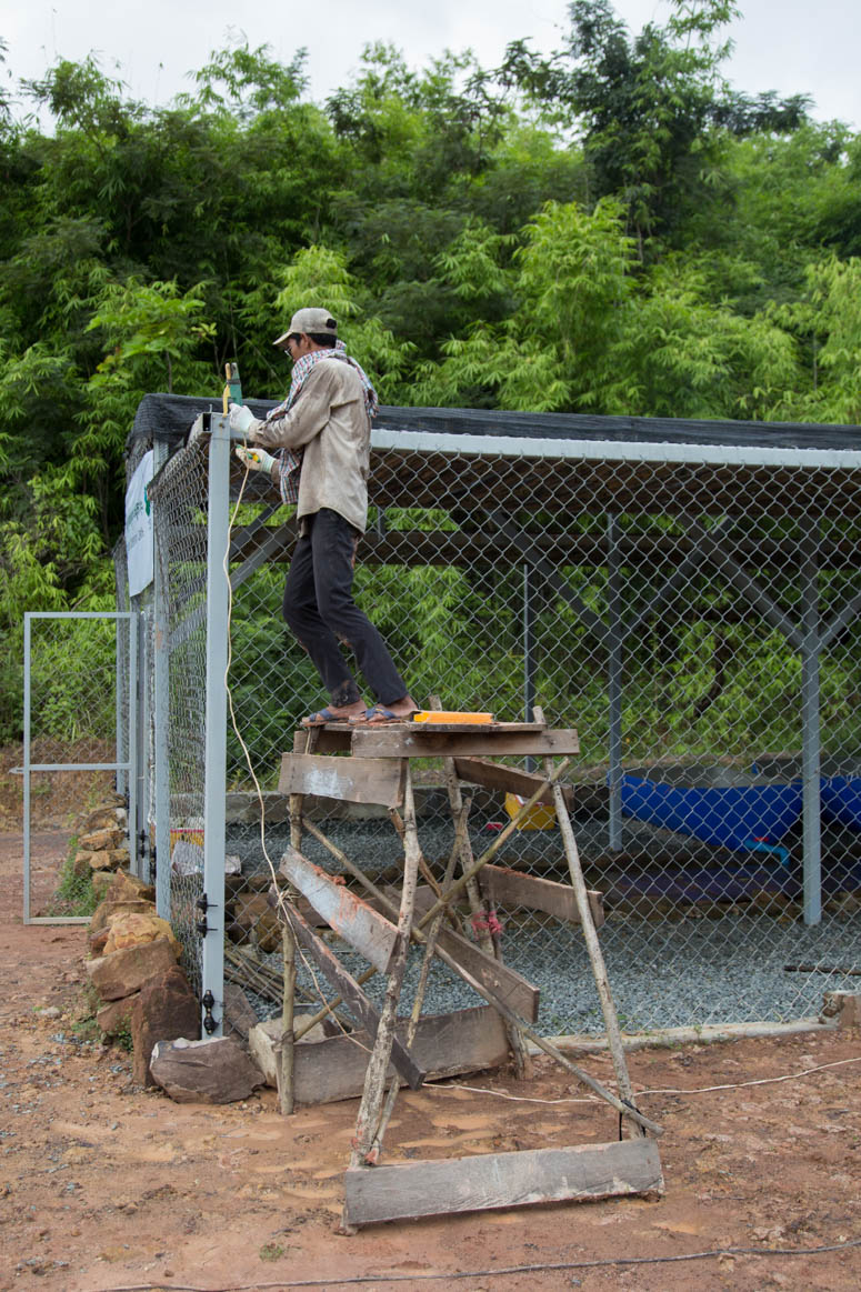 welding at the turtle sanctuary