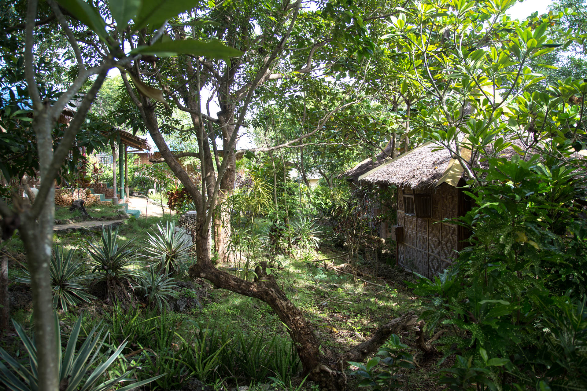 Eco Resort Bantayan