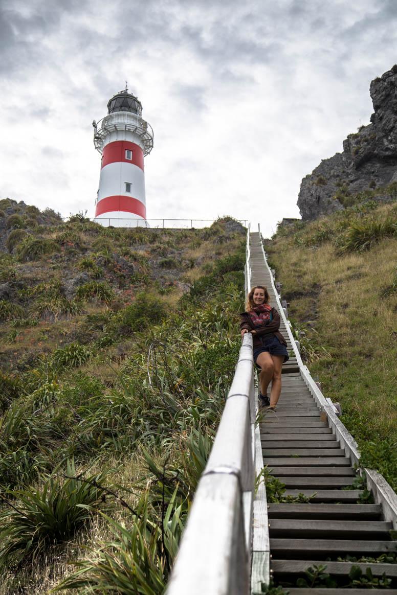 Cape Palliser fast oben
